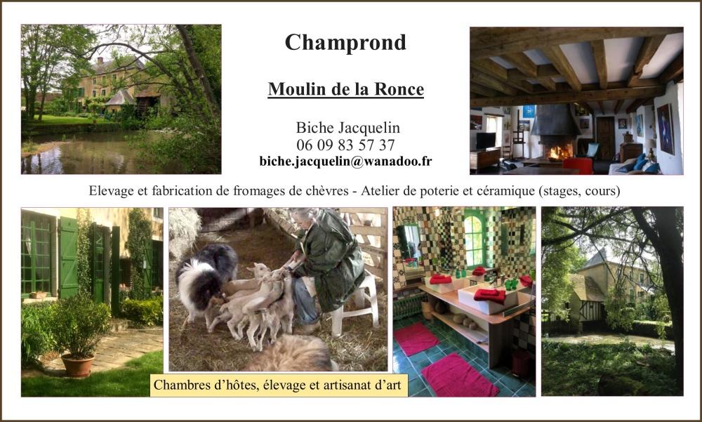 Moulin de la Ronce à Champrond