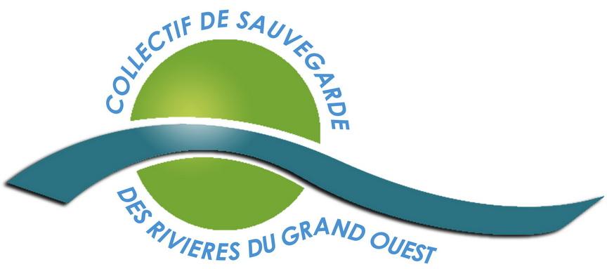 logo CSRGO moins lourd